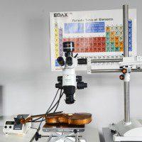 Stereomicroscopia